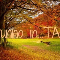 Autunno in Tag